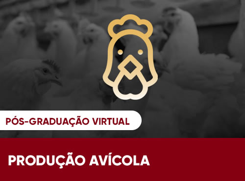 Producao_Avicula